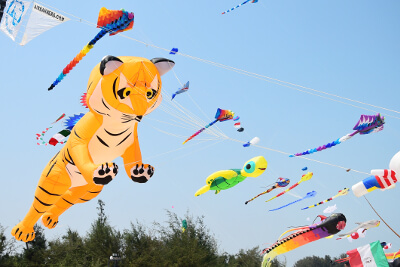 a bunch of kites flying in the sky